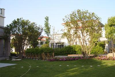 别墅庭园设计基本原理