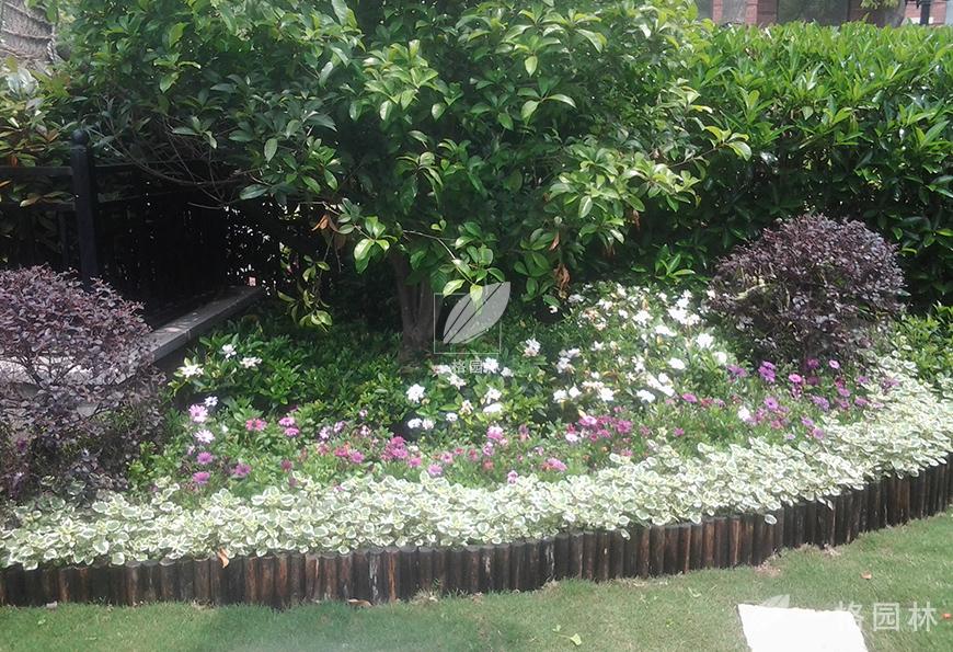 南郊中华园别墅花园