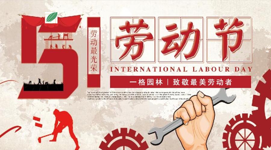 五一劳动节|致敬最美劳动者