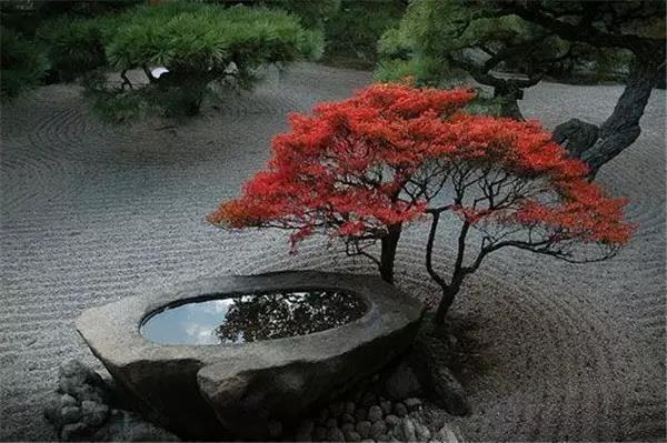 一格园林讲解日式花园设计理念